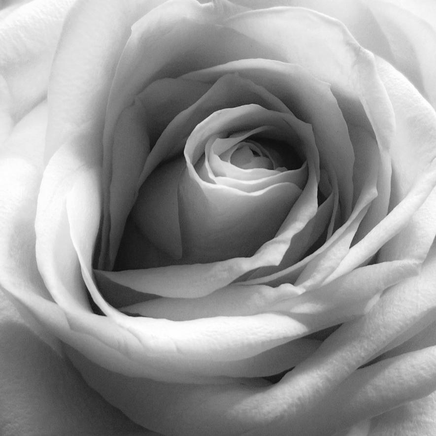 Kukkalaitteet, kukkavihkot ja hautajaiskukat surusidonnan ammattilaisilta